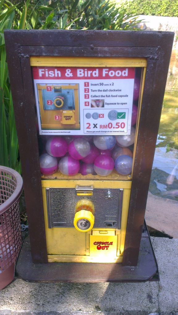 You can feed the fish and bird by buying this food capsule.