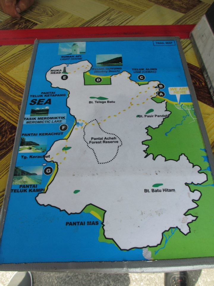 The Penang National Park area...