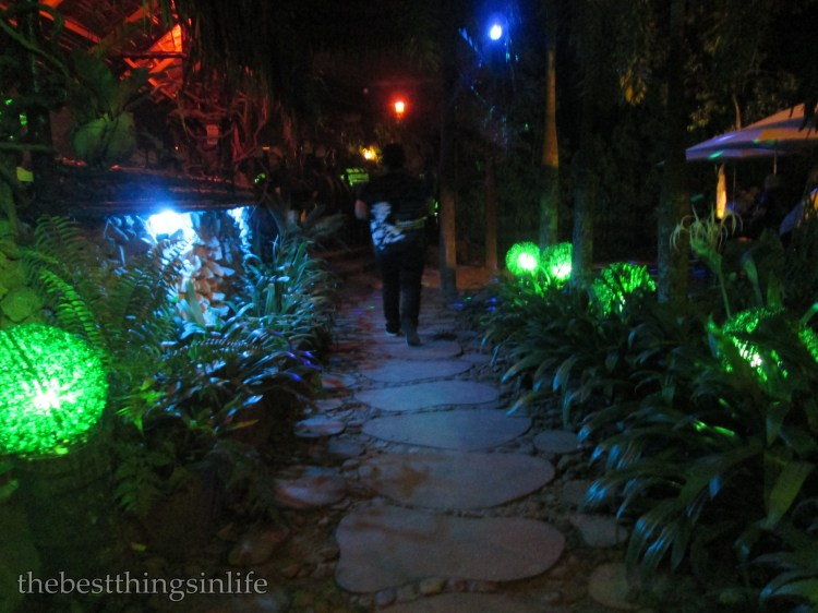 The pathway leading to the terrace.